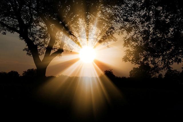 sun-3130638_640